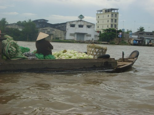 Coconuts, Coffee and Close Calls on the Mekong Delta
