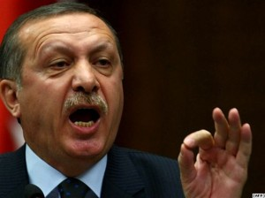 Turkish Prime Minister Recep Tayyip Erdogan (AFP)