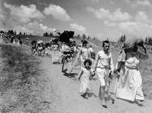 Over 700,000 Arabs were ethnically cleansed from Palestine in 1948-49.
