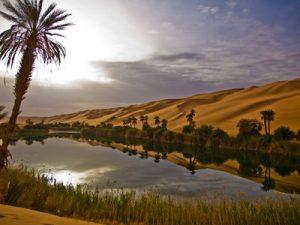 A Libyan oasis