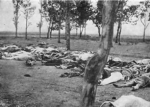 100 Armenian Genocide Anniversary Symbol