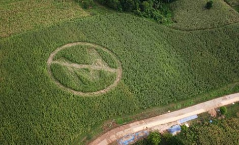 An anti-Monsanto crop circle made by local farmers and Greenpeace volunteers in the Philippines. (Photo: Melvyn Calderon / Greenpeace / AP)