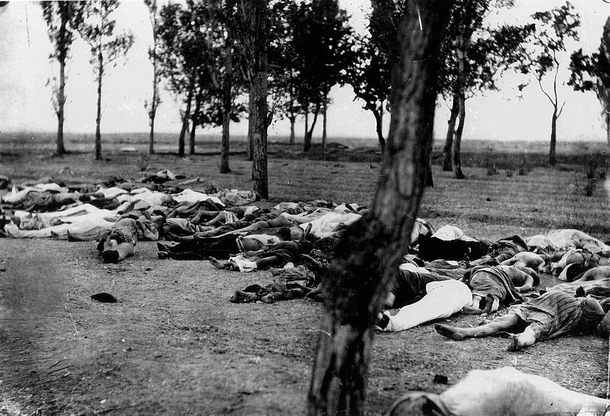 essays on genocide denial