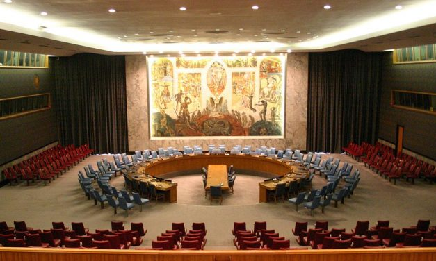 New Zealand's Naivety at UN Security Council has Sinister Implications