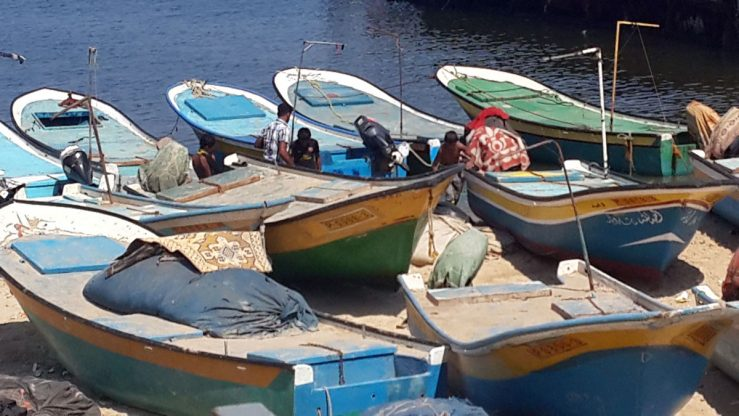 Boats at the port.