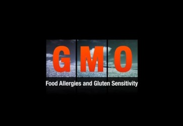 GMO Food Allergies and Gluten Sensitivity: Jeffrey Smith