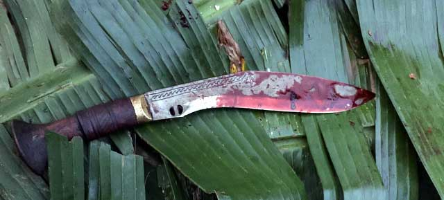 Nepal's famous khukuri blade soaked in sacrificial lifeblood (Photo: Alonzo Lyons)
