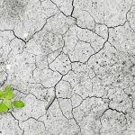 Water Scarcity: Cooperation or Conflict in the Middle East and North Africa?