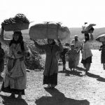 The Colonization of Palestine: Rethinking the Term 'Israeli Occupation'