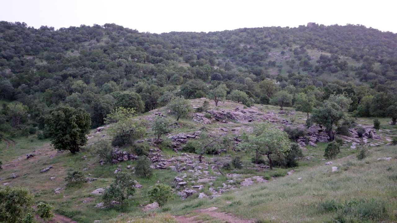 Chamma Rabatka landscape